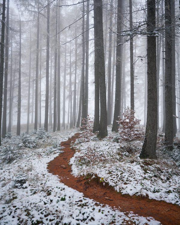 Iztok Media - Zimska Jesen (odtis)